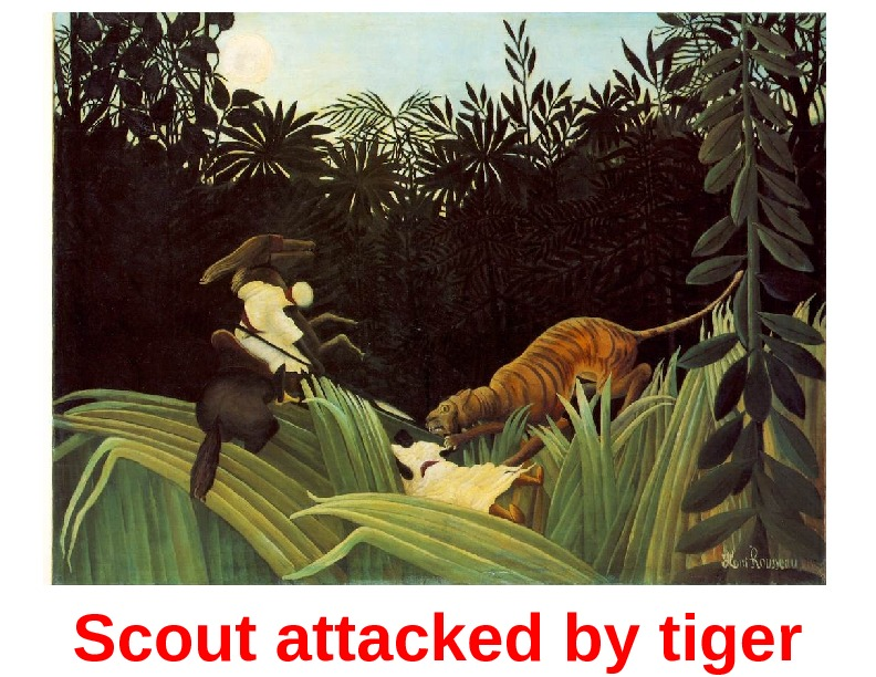 Scout attacked by tiger