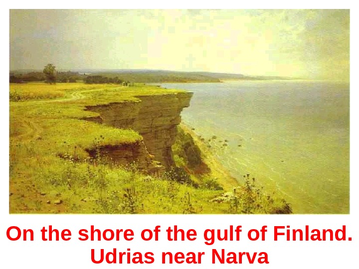 On the shore of the gulf of Finland.  Udrias near Narva