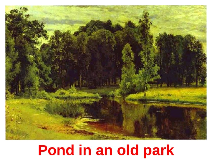 Pond in an old park