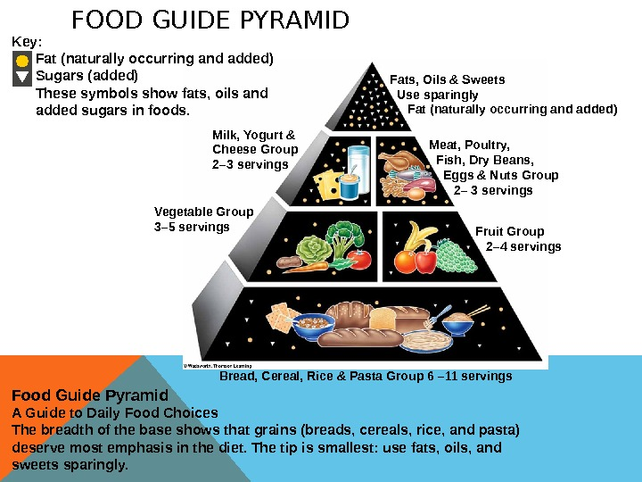 FOOD GUIDE PYRAMID Milk, Yogurt & Cheese Group 2– 3 servings Food Guide Pyramid A Guide