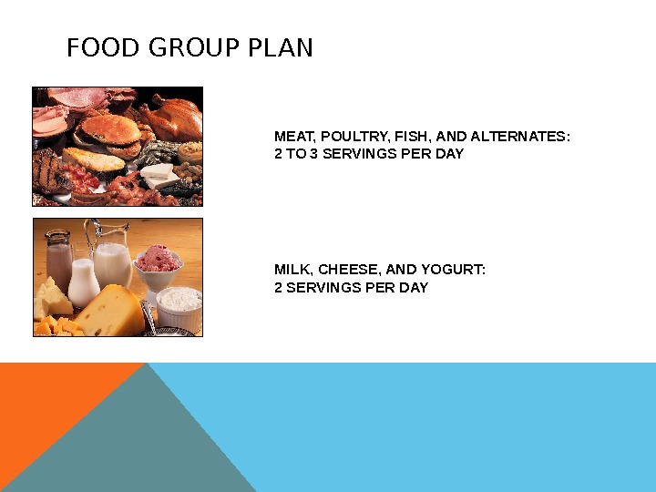 FOOD GROUP PLAN MEAT, POULTRY, FISH, AND ALTERNATES: 2 TO 3 SERVINGS PER DAY MILK, CHEESE,
