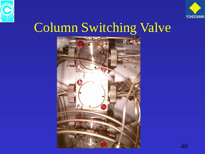 48 Column Switching Valve