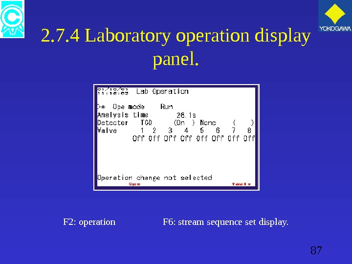 87 2. 7. 4 Laboratory operation display panel. F 2: operation   F 6: stream