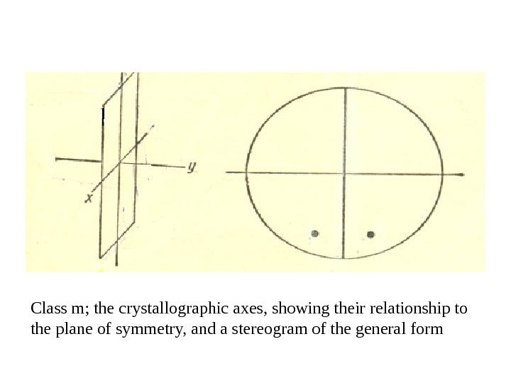 Class m; the crystallographic axes, showing their relationship to the plane of symmetry, and