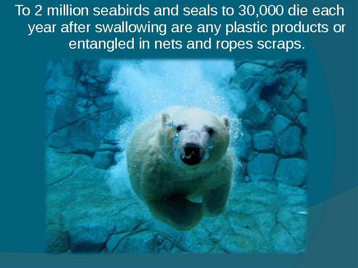 To 2 million seabirds and seals to 30, 000 die each year after swallowing are any