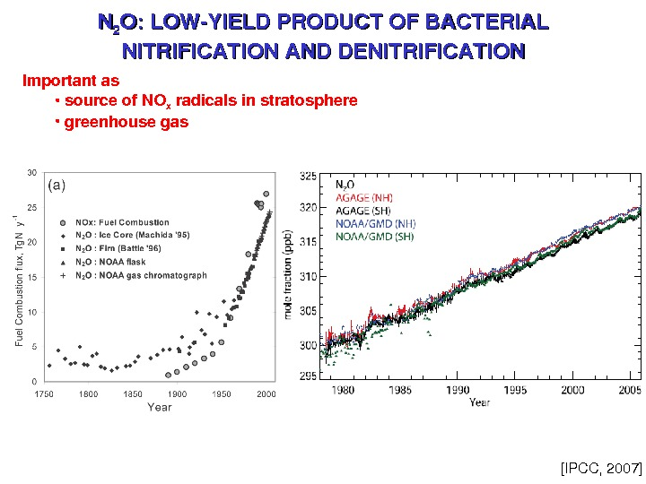 NN 22 O: LOWYIELDPRODUCTOFBACTERIAL NITRIFICATIONANDDENITRIFICATION Importantas •  sourceof. NO x radicalsinstratosphere •  greenhousegas [IPCC,