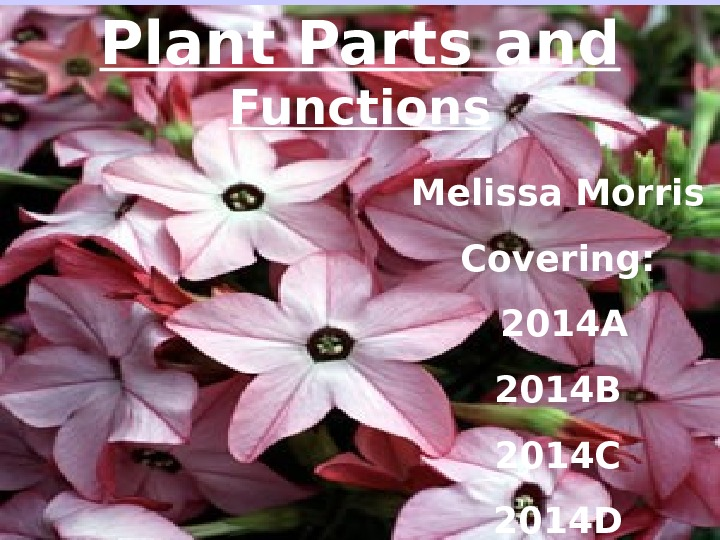 Plant Parts and Functions Melissa Morris Covering:  2014 A 2014 B 2014 C