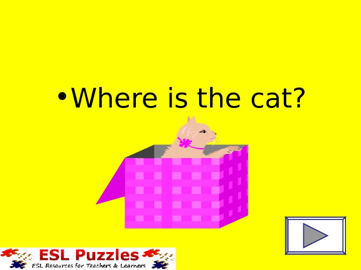 • Where is the cat?