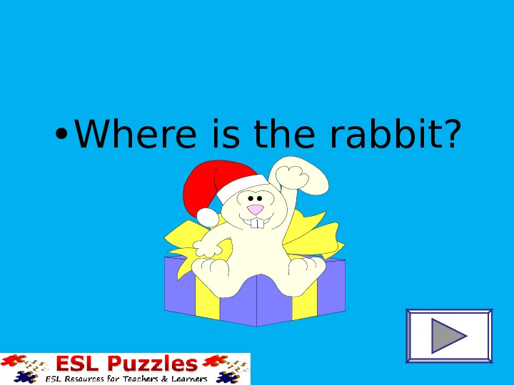 • Where is the rabbit?