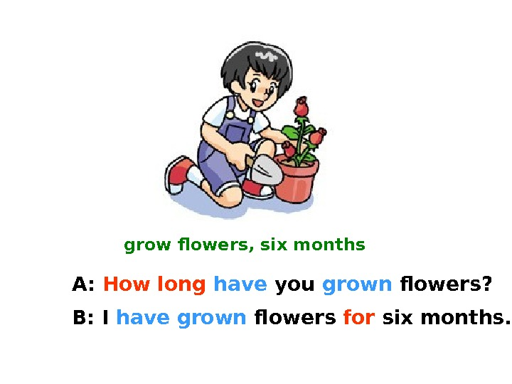grow flowers, six months A:  How long  have  you grown  flowers? B:
