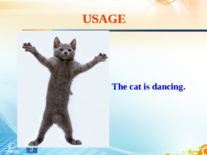 USAGE The cat is dancing. 3