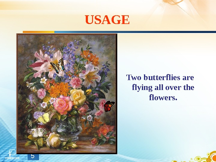 USAGE Two butterflies are flying all over the flowers. 5