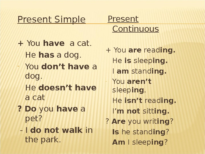 Present Simple + You have  a cat. He has a dog. - You don't have