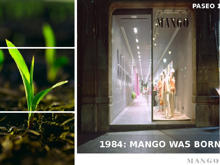 1984: MANGO WAS BORN PASEO 1