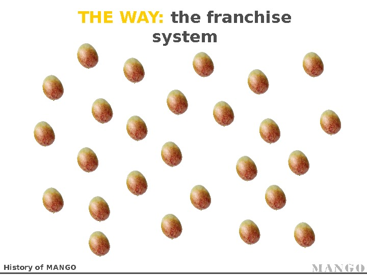 THE WAY:  the franchise system History of MANGO