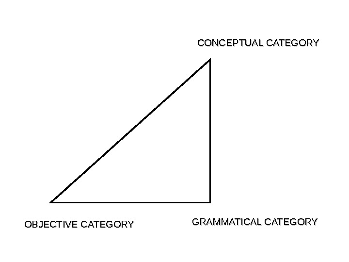OBJECTIVE CATEGORY GRAMMATICAL CATEGORY CONCEPTUAL CATEGORY