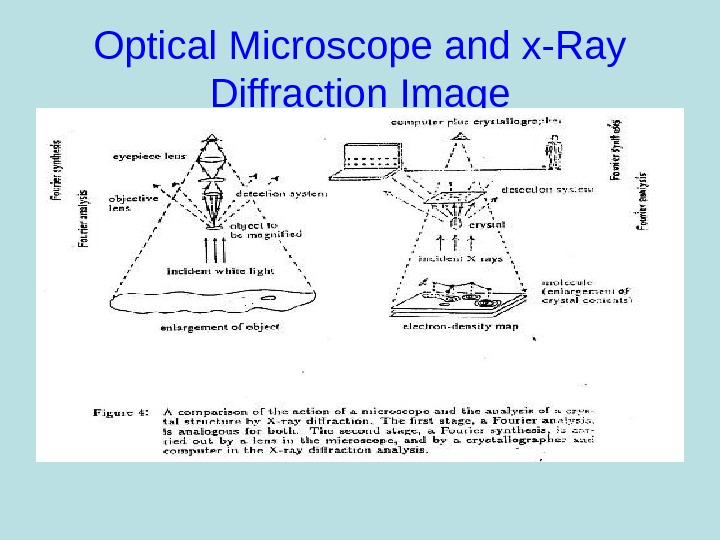 Optical Microscope and x-Ray Diffraction Image