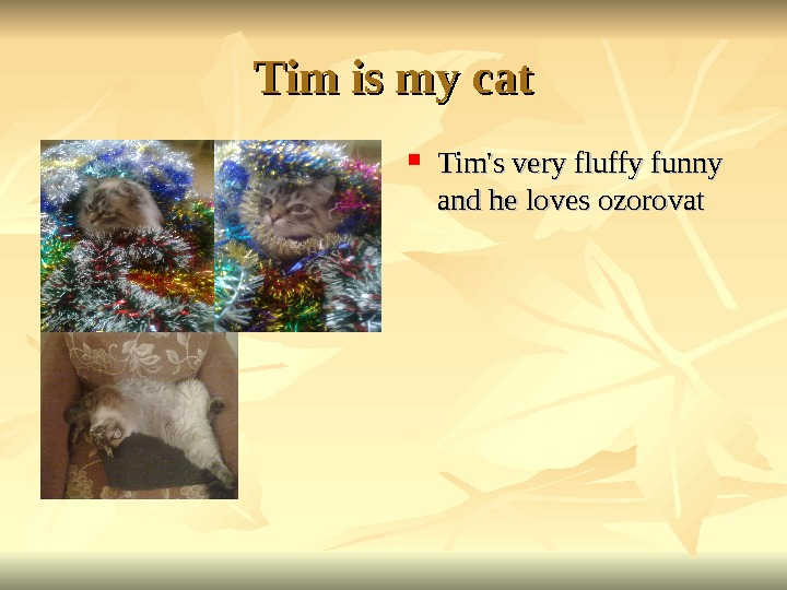 Tim is my cat Tim's very fluffy funny and he loves ozorovat
