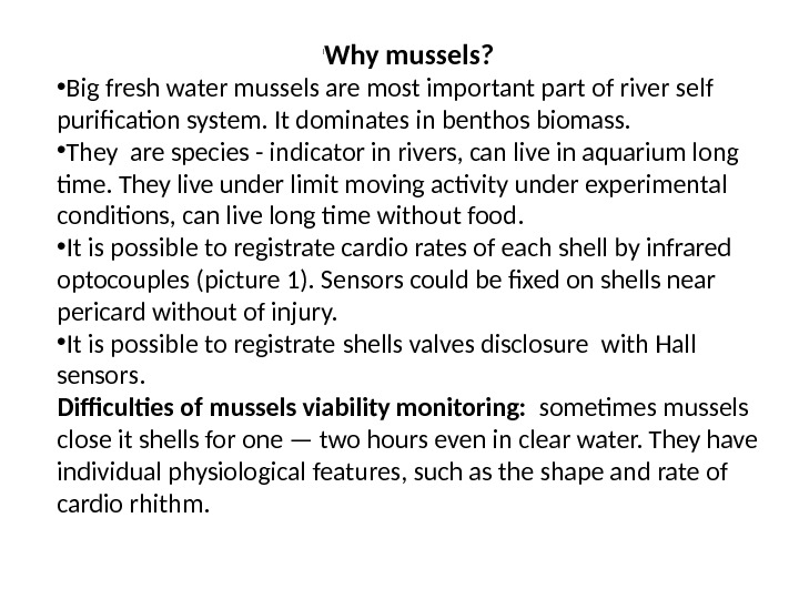 l Why mussels?  • Big fresh water mussels are most important part of river self