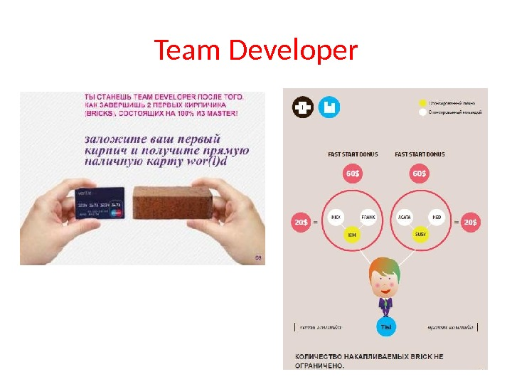 Team Developer