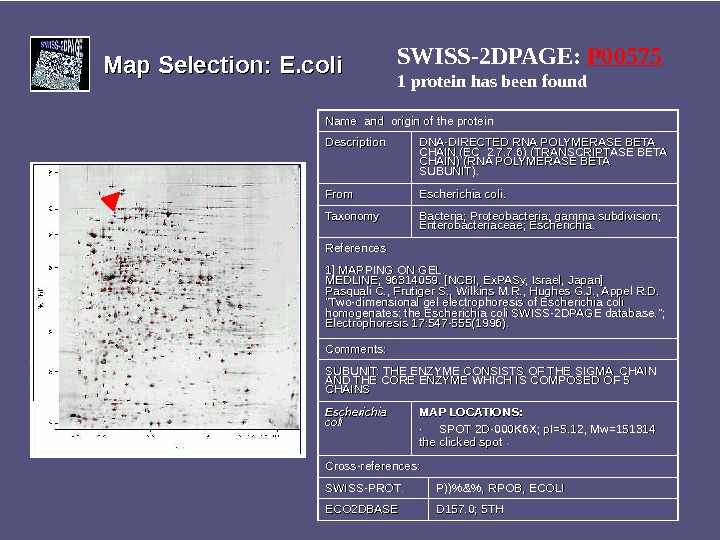 Map Selection: E. coli SWISS-2 DPAGE:  P 00575 1 protein has been found Name and