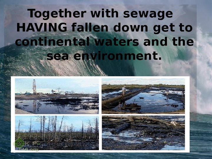 Together with sewage HAVING fallen down get to continental waters and the sea environment.