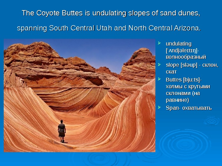 TT he Coyote Buttes is undulating slopes of sand dunes, spanning South Central Utah