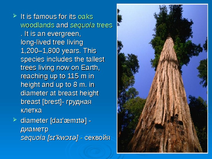 It is famous for its oaks woodlands and ss equoia  trees  .