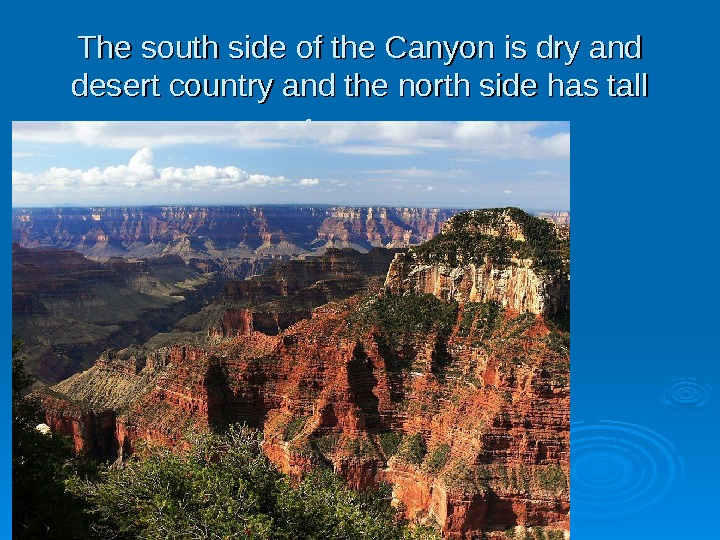 The south side of the Canyon is dry and desert country and the north