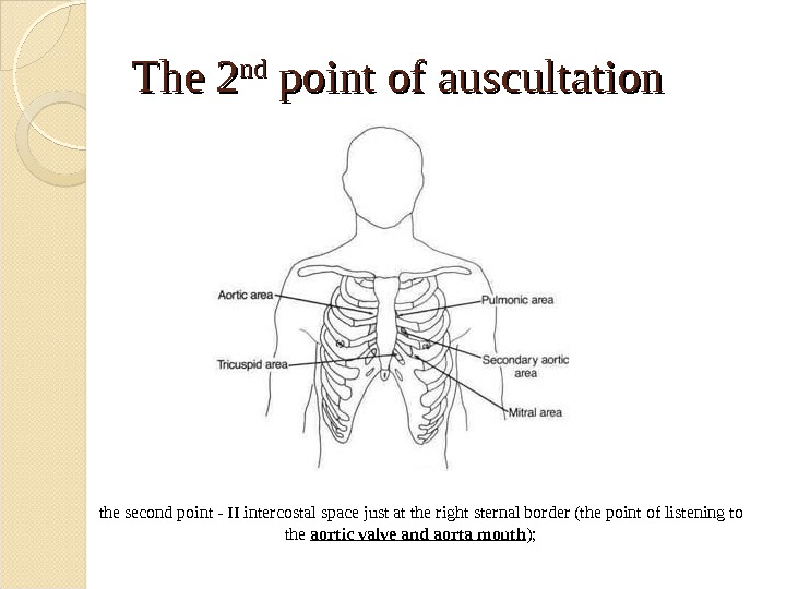 The 2 ndnd point of auscultation the second point - II intercostal space just at the