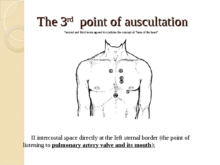 The 3 rdrd  point of auscultation II intercostal space directly at the left sternal border