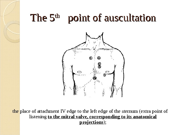 The 5 thth  point of auscultation the place of attachment IV edge to the left