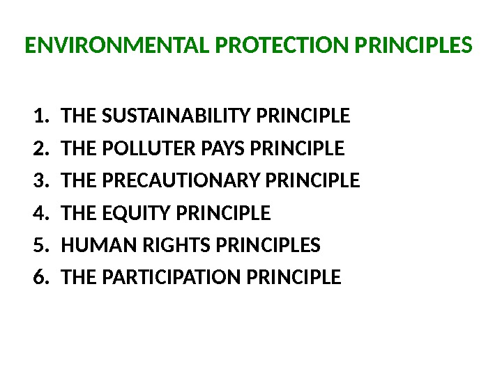 ENVIRONMENTAL PROTECTION PRINCIPLES 1. THE SUSTAINABILITY PRINCIPLE  2. THE POLLUTER PAYS PRINCIPLE 3. THE PRECAUTIONARY