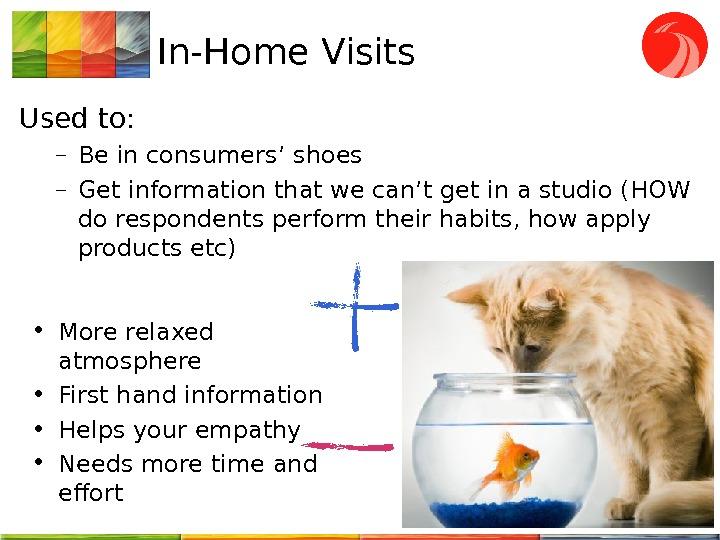 In-Home Visits Used to: – Be in consumers' shoes – G et information that we can't