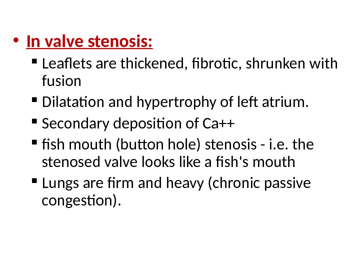 • In valve stenosis:  Leaflets are thickened, fibrotic, shrunken with fusion Dilatation and hypertrophy