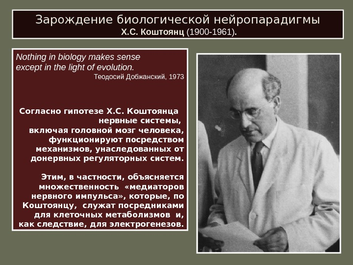 Зарождение биологической нейропарадигмы  Х. С. Коштоянц (1900-1961). Nothing  in biology makes sense е x