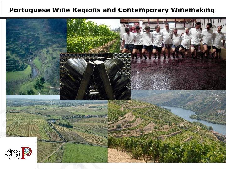 Portuguese Wine Regions and Contemporary Winemaking
