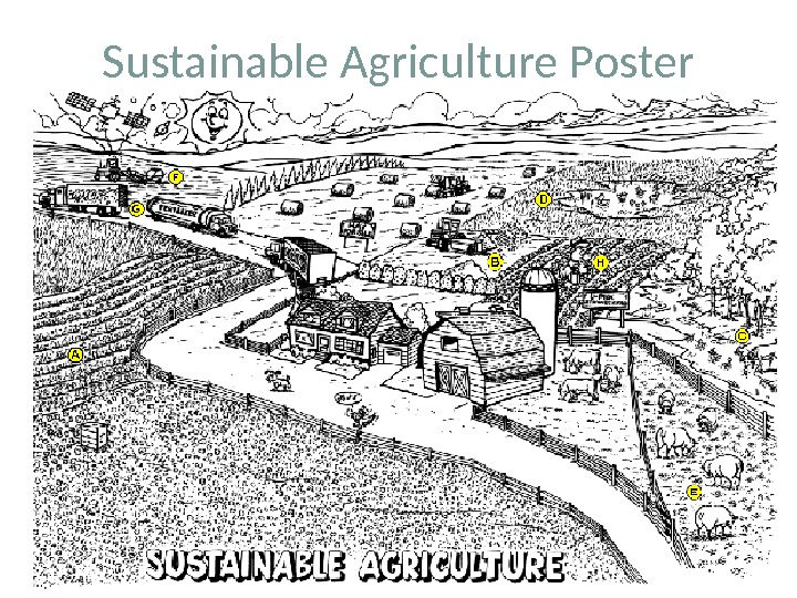 Sustainable Agriculture Poster
