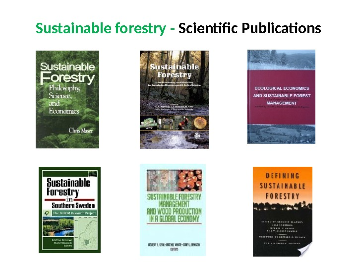 Sustainable forestry - Scientific Publications