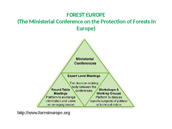 FOREST EUROPE (The Ministerial Conference on the Protection of Forests in Europe) http: //www. foresteurope. org