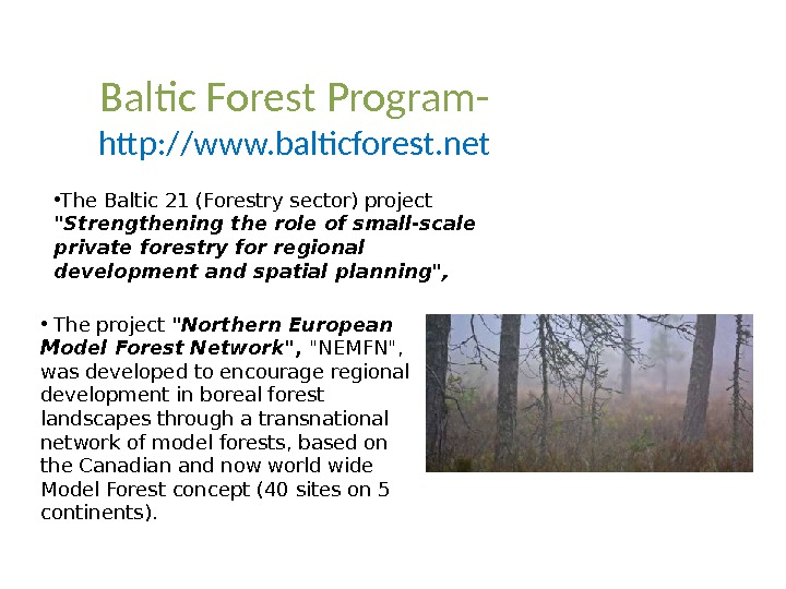 Baltic Forest Program- http: //www. balticforest. net • The Baltic 21 (Forestry sector) project  Strengthening