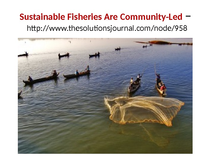 Sustainable Fisheries Are Community-Led –  http: //www. thesolutionsjournal. com/node/958