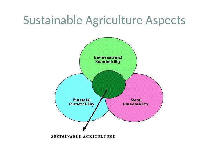 Sustainable Agriculture Aspects