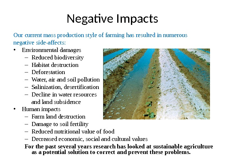 Negative Impacts Our current mass production style of farming has resulted in numerous negative side-affects: