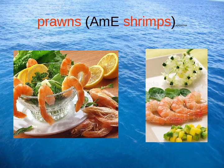 prawns (Am. E shrimps ) креветки