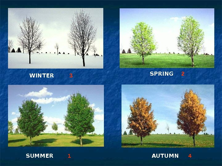 WINTER SPRING SUMMER  AUTUMN 3 2 1 4