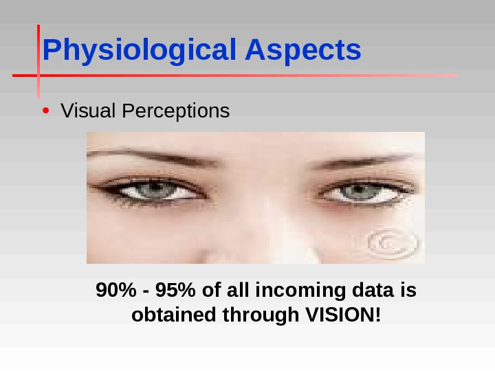 Physiological Aspects • Visual Perceptions 90 - 95 of all incoming data is obtained through VISION!