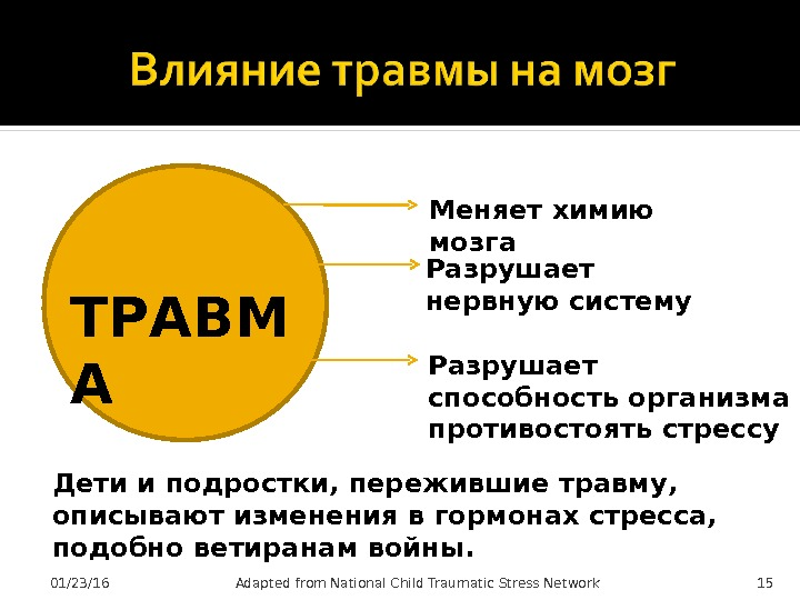 01/23/16 15 Adapted from National Child Traumatic Stress Network. ТРАВМ А Меняет химию мозга Разрушает нервную