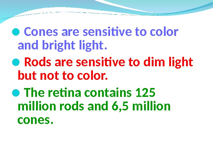 Cones are sensitive to color  and bright light.  Rods are sensitive to dim
