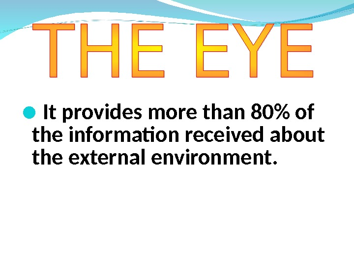 It provides more than 80 of the information received about the external environment.